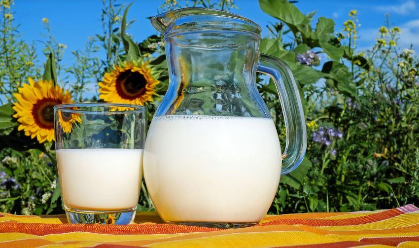 Melk en Meer Versspecialist